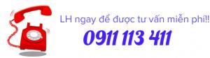 LH 0911 113 411